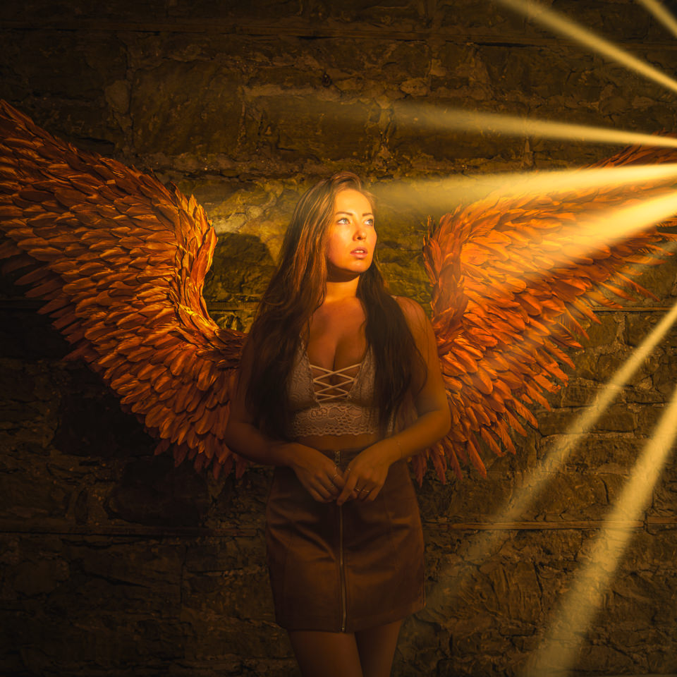 SNAP Foto Club gold angel wings